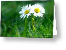 Always Greeting Card by Photodream Art