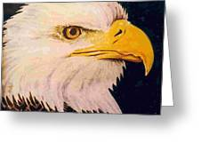 American Bald Eagle Greeting Card by Dy Witt