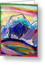 American Buffalo Sunset Greeting Card by M C Sturman