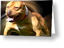American Red Bully Pitbull By Spano Greeting Card by Michael Spano