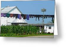 Amish Laundry Greeting Card by Lori Seaman