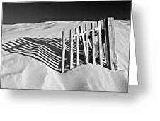 Amoreira Shadows Greeting Card by John McKinlay