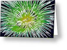 An Abstract Scene Of Sea Anemone 2 Greeting Card by Lanjee Chee