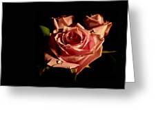 Anastasia's Rose Greeting Card by Susan Duda