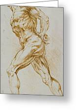 Anatomical Study Greeting Card by Rubens