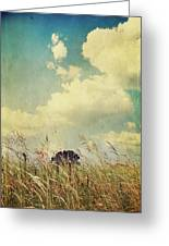 And The Livin's Easy Greeting Card by Laurie Search