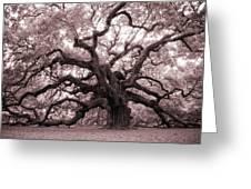 Angel Oak Tree Greeting Card by Dustin K Ryan