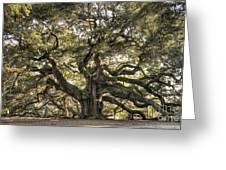 Angel Oak Tree Live Oak  Greeting Card by Dustin K Ryan