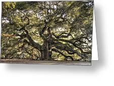Angel Oak Tree Live Oak  Greeting Card by Dustin K Ryan