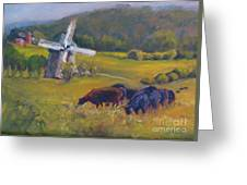 Angus On The Ridge Greeting Card by B Rossitto