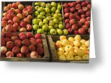 Apple Harvest Greeting Card by Garry Gay