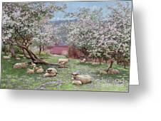 Appleblossom Greeting Card by William Biscombe Gardner