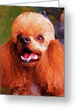 Apricot Poodle Greeting Card by Jai Johnson
