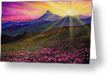 April Sunset Greeting Card by C Steele