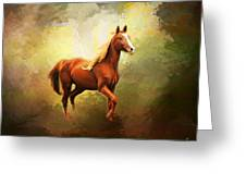Arabian Horse Greeting Card by Jai Johnson