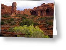 Arches Park 1 Greeting Card by Marty Koch