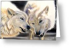 Arctic Pair Greeting Card by Sandi Baker