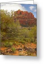 Arizona Outback 3 Greeting Card by Mike McGlothlen