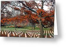 Arlington Cemetery In Fall Greeting Card by Carolyn Marshall