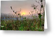 As Morning Comes Greeting Card by Robert Pearson