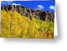 Aspen Glory Greeting Card by Marty Koch
