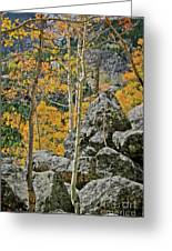 Aspens Rocks And Longs Peak Greeting Card by Brent Parks