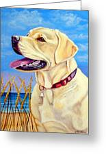 At The Beach - Labrador Retriever Greeting Card by Lyn Cook