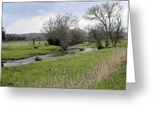 At The River Greeting Card by Jan Amiss Photography