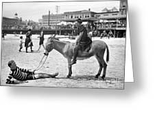 Atlantic City: Donkey Greeting Card by Granger