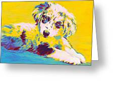 Aussie Puppy-yellow Greeting Card by Jane Schnetlage