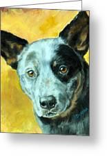 Australian Cattle Dog Blue Heeler On Gold Greeting Card by Dottie Dracos