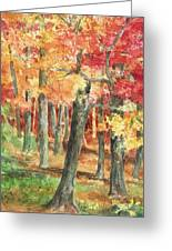 Autumn Greeting Card by Barbel Amos
