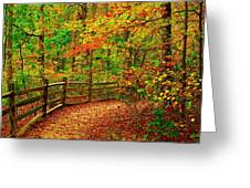 Autumn Bend - Allaire State Park Greeting Card by Angie Tirado