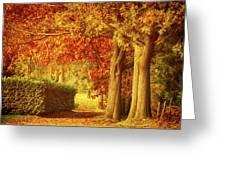 Autumn Colors Greeting Card by Wim Lanclus