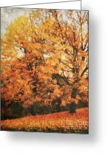 Autumn Dream Greeting Card by Angela Doelling AD DESIGN Photo and PhotoArt
