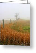 Autumn Grasses Greeting Card by Julie Lueders