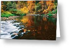 Autumn On The Merced River Yosemite Np Greeting Card by Edward Mendes