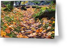 Autumn Path Greeting Card by Mike  Dawson