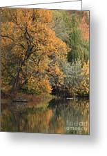 Autumn Riverbank Greeting Card by Carol Groenen