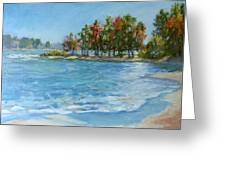 Autumn Shores - Jordan Lake Greeting Card by L Diane Johnson