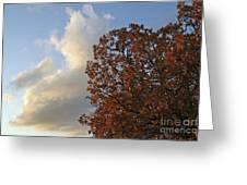 Autumn Sky Greeting Card by Jeannie Burleson