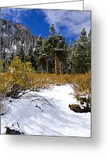 Autumn Snow Greeting Card by Chris Brannen