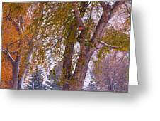 Autumn Snow Park Bench   Greeting Card by James BO  Insogna