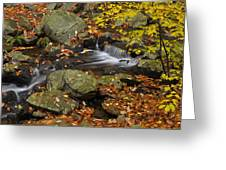 Autumn Stream-Smokey Mountains Greeting Card by Stephen  Vecchiotti