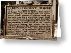 Babes Longest Homer Greeting Card by David Lee Thompson