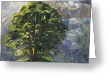 Backdrop Of Grandeur Plein Air Study Greeting Card by Anna Bain