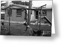 Backyard Swing Set..... Greeting Card by WaLdEmAr BoRrErO