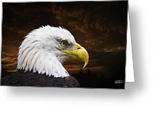 Bald Eagle - Freedom And Hope - Artist Cris Hayes Greeting Card by Cris Hayes