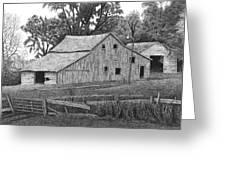 Barn 14 Greeting Card by Joel Lueck