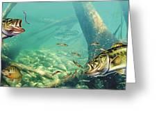 Bass Lake Greeting Card by JQ Licensing